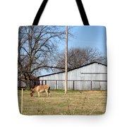 Donkey Lebanon In Oklahoma Tote Bag