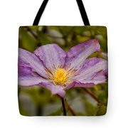 Donna's Purple Flower Tote Bag