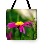 Donna's Teeter Totter Tote Bag