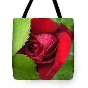 Don't Cry For Me Rosanna Tote Bag