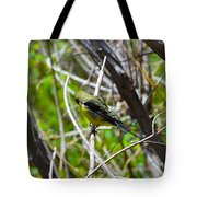 Don't Look Here Bird Tote Bag
