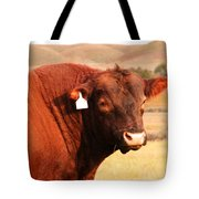 Dont Mess With The Bull Tote Bag