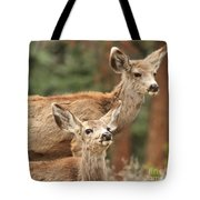 Don't You Tell Mom Tote Bag