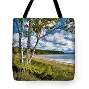 Door County Europe Bay Birch Tote Bag