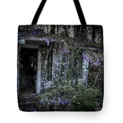 Doorway And Flowers Two Tote Bag