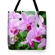 Doritaenopsis Flower Tote Bag