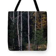 Dormant And Not Tote Bag