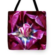 Double Amethyst Tote Bag