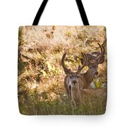 Double Tote Bag