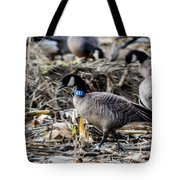 Double Banded Aleutian Tote Bag