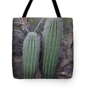 Double Barrel Saguaro Tote Bag