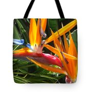 Double Bird Of Paradise - 1 Tote Bag