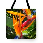 Double Bird Of Paradise - 2 Tote Bag