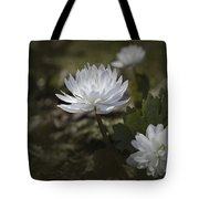 Double Bloodroot Tote Bag