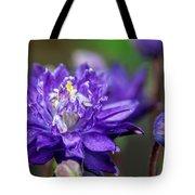 Double Blue Columbine Flower Tote Bag