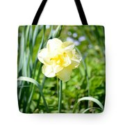 Double Charm Tote Bag
