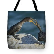 Double-crested Cormorants Tote Bag