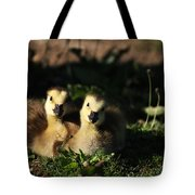 Double Cute Tote Bag