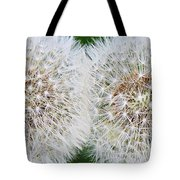 Double Dandelion Wishes Tote Bag