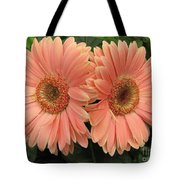 Double Delight - Coral Gerbera Daisies Tote Bag