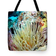 Double Giant Anemone And Arrow Crab Tote Bag