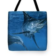 Double Header Makaira Nigricans, Blue Tote Bag