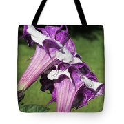 Double Purple Datura 8 Tote Bag