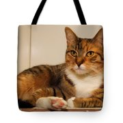 Double Tabby Tote Bag