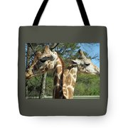 Giraffes With A Twist Tote Bag