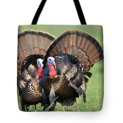 Double Trouble Tote Bag by Todd Hostetter