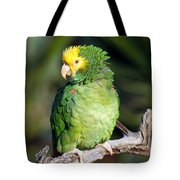 Double Yellow Headed Parrot Tote Bag