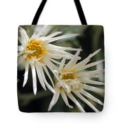 Doubly White Tote Bag