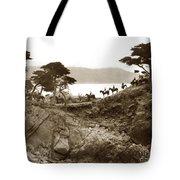 Douglas School For Girls At Lone Cypress Tree Pebble Beach 1932 Tote Bag