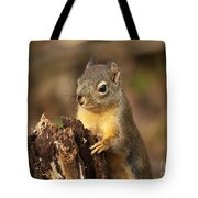Douglas Squirrel On Stump Tote Bag