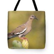 Dove On A Cactus Bud Tote Bag