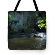 Dowlin Forge Park - Brandywine Creek Tote Bag