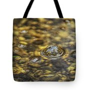 Down By The Bubbling Spring Tote Bag
