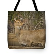 Down By The Duck Pond Tote Bag