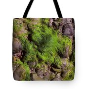 Down By The Seaside Tote Bag
