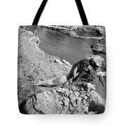 Down By The Water Tote Bag