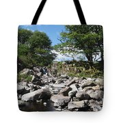 Down From The Mountains Tote Bag