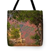 Down Into The Grand Canyon Tote Bag