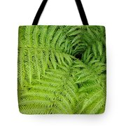 Down The Fernhole Tote Bag