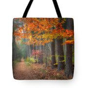 Down The Trail Square Tote Bag by Bill Wakeley