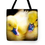 Downy Ducklings Tote Bag