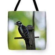 Downy Woodpecker 7448 Tote Bag
