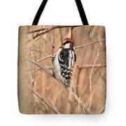 Downy Woodpecker In Brush Tote Bag
