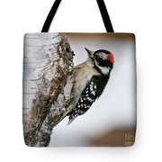 Downy Woodpecker Pictures 26 Tote Bag