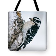 Downy Woodpecker Pictures 27 Tote Bag