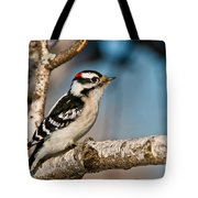 Downy Woodpecker Pictures 34 Tote Bag